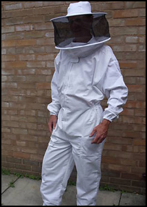 An all in one bee suit