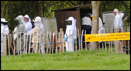 Our TeachingApiary