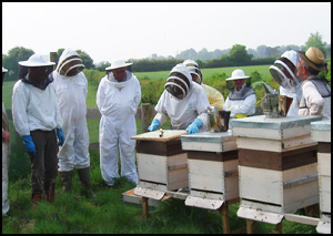 Members Attending Apiary Meeting